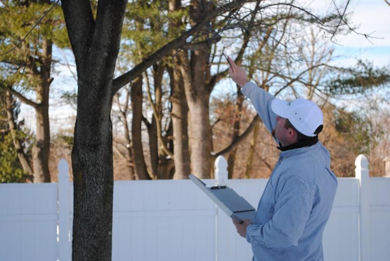 Worcester Ma Certfied Arborist Graeme Elliott